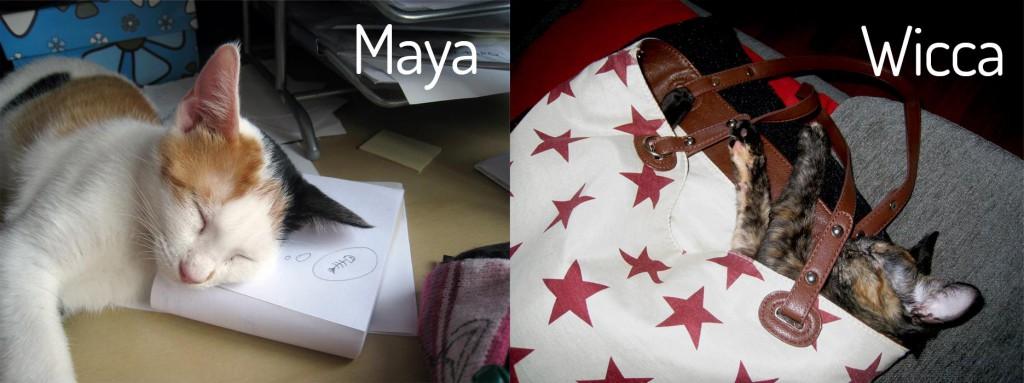 maya-wicca