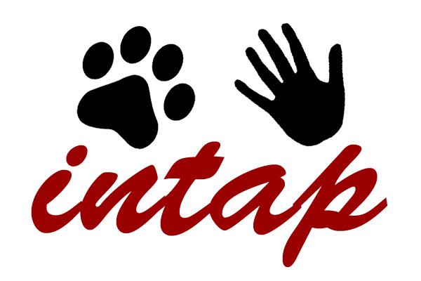 logo-intap-bajo